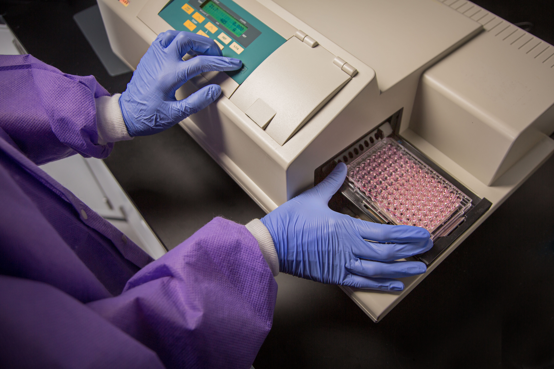 immunoassay testing, immunoassay test, immunoassay tests
