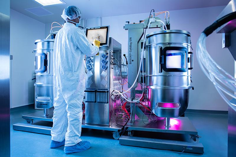 virus manufacturing